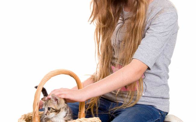 photographe petshoot petbook animaux chat chaton geneve geneva enfant